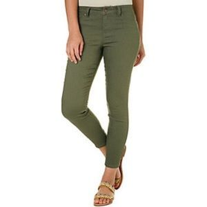 Blue Spice Olive Jean Pants